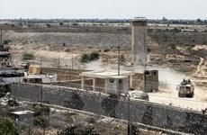 Hamas khẳng định Ai Cập sẵn sàng trợ giúp về vấn đề Dải Gaza