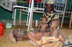 Mưa ít ảnh hưởng mùa màng gây ra nạn đói trầm trọng tại Đông Phi