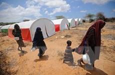 Báo động nguy cơ bùng nổ dân số tại các quốc gia Tây Phi