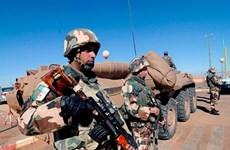 Quân đội Algeria tiêu diệt sáu phần tử khủng bố nguy hiểm