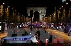 Châu Âu dùng bêtông và bao cát ngăn khủng bố bằng xe tải