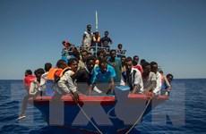 Đức và Ai Cập nhất trí kế hoạch ngăn chặn dòng người di cư