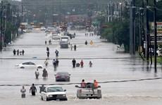 Nhà máy của Exxon, Shell bị tràn chất thải và hóa chất do bão Harvey