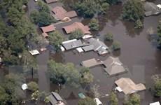 Tổng thống Mỹ đề xuất hỗ trợ gần 8 tỷ USD tái thiết sau bão Harvey