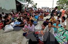 Chính phủ Myanmar bác bỏ đề nghị ngừng bắn của phiến quân