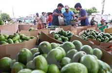 Cơ hội đột phá thị trường Nga cho hàng nông sản Việt Nam