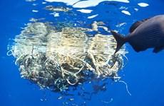 Phát hiện đảo rác túi nilon khổng lồ ở Nam Thái Bình Dương