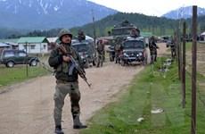 Pakistan triệu đại diện Ấn Độ phản đối vi phạm thỏa thuận ngừng bắn