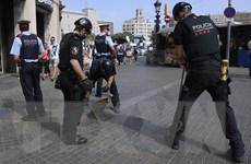 Tấn công tại Tây Ban Nha: Nhóm khủng bố đã chế tạo 100kg thuốc nổ TATP