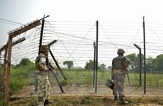 Gia tăng vụ vi phạm lệnh ngừng bắn dọc biên giới Ấn Độ-Pakistan