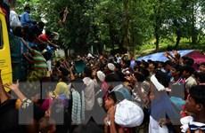 Ấn Độ cáo buộc người Rohingya có liên hệ với phiến quân tại Pakistan