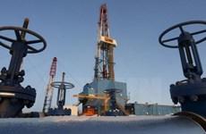 Bộ trưởng Venezuela cáo buộc Mỹ đang làm bất ổn giá dầu thô