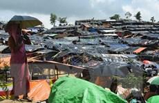 WHO cảnh báo nguy cơ dịch bệnh tại các trại tị nạn Bangladesh
