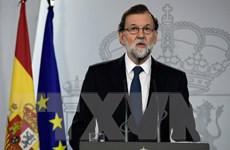 Tây Ban Nha không loại trừ việc đình chỉ quyền tự trị của Catalonia
