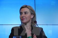 Thỏa thuận đối thoại chính trị và hợp tác EU-Cuba có hiệu lực tạm thời