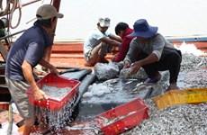 Ngành thủy sản quyết tâm lấy lại 'thẻ xanh' - khó vẫn phải làm
