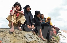Liên hợp quốc cảnh báo yếu tố diệt chủng đối với người Rohingya