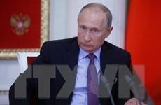 Tổng thống Nga kêu gọi nối lại đàm phán hòa bình Israel-Palestine