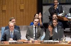 [Video] Mỹ phủ quyết dự thảo nghị quyết HĐBA về Jerusalem