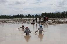 [Video] Philippines: Số người thiệt mạng do bão Tembin tiếp tục tăng