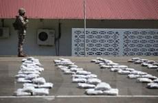 Argentina tịch thu gần 3 tấn cần sa trong dịp lễ Giáng sinh