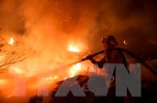 Lực lượng cứu hỏa Mỹ tiếp tục diệt giặc lửa trong đêm Giáng sinh