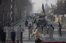 Đánh bom tự sát vào đoàn xe quân đội Afghanistan, 16 người thương vong