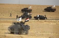 Số lượng tay súng của tổ chức IS tại Iraq và Syria giảm mạnh