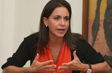 Phe đối lập Venezuela mâu thuẫn trong thừa nhận quốc hội lập hiến