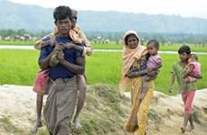 Mỹ nghi ngờ cam kết của Myanmar về người tị nạn Rohingya