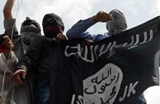 Đức tham gia chiến dịch của Mỹ nhắm vào tay súng IS trở về châu Âu