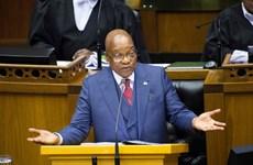 Truyền thông Nam Phi: ANC quyết định cách chức Tổng thống Zuma