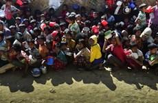 Liên hợp quốc: Vẫn tồn tại nhiều vấn đề tại bang Rakhine của Myanmar