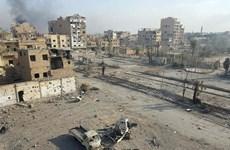 5 công dân Nga tử vong trong vụ không kích của liên quân tại Syria
