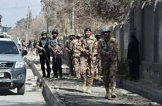 Mỹ: Những chiến dịch của Pakistan đã làm giảm nguy cơ khủng bố