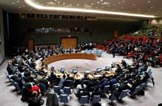 HĐBA kêu gọi các bên tại Syria tuân thủ nghị quyết ngừng bắn