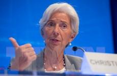 IMF hối thúc Eurozone hành động củng cố năng lực tài chính