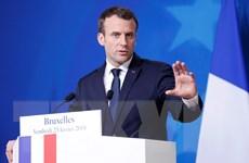 Tổng thống Pháp Emmanuel Macron vẫn tới thăm Nga như dự kiến