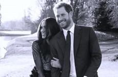 Đám cưới Hoàng tử Harry tốn 30 triệu bảng Anh làm hàng rào an ninh