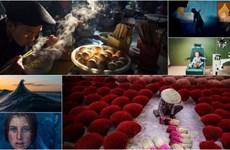 Ngắm 2 bức ảnh của tay máy Việt thắng giải đặc biệt Smithsonian