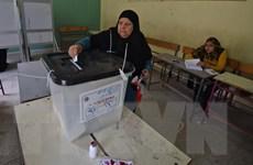 Ai Cập sẽ tổ chức bầu cử hội đồng địa phương vào năm 2019
