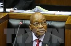 Cựu Tổng thống Nam Phi Jacob Zuma chỉ trích cáo buộc tham nhũng