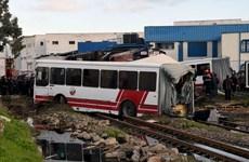 Tunisia: Hai xe buýt chở công nhân va chạm, hơn 70 người thương vong