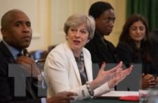 Nội các Anh thông qua kế hoạch hành động với cuộc khủng hoảng Syria