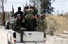 Lãnh đạo Nga-Đức thảo luận về tình hình Syria và dự án khí đốt