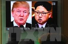 Hai nhà lãnh đạo Mỹ-Triều Tiên có thể nhất trí về phi hạt nhân hóa