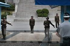 Hàn-Mỹ ngừng tập trận sự vào ngày diễn ra gặp thượng đỉnh liên Triều