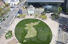 Lãnh đạo Hàn-Triều sẽ trồng cây lưu niệm nhân cuộc gặp thượng đỉnh
