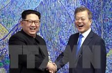 Nga, Nhật ca ngợi hội nghị thượng đỉnh giữa hai miền Triều Tiên
