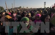 Mỹ ủng hộ Bangladesh trong cuộc khủng hoảng người Rohingya
